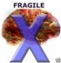 Fragile X Syndrome and Autism DVD