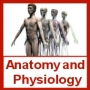 HUMAN ANATOMY & PHYSIOLOGY TEACHING / TRAINING - 4 DVDS 4+ Hrs