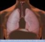 Respiratory Examination and Assessment Training DVD